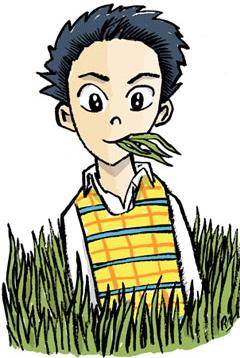 Japanese herbivore men