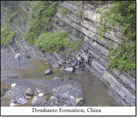 Doushanto Formation