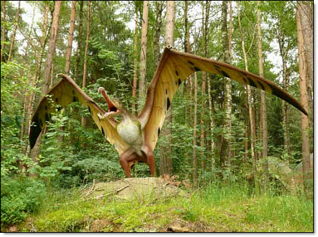 12 Pterosaur