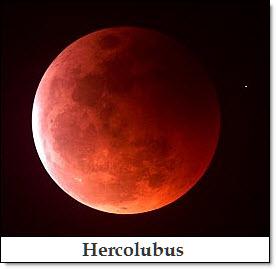 14 Hercolubus