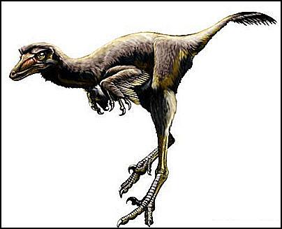 22 New Raptor Dinosaur