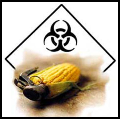 15 Monsanto Still in the News.photo