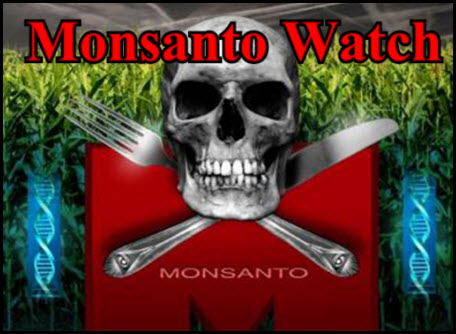 28 MONSANTO WATCH Photo