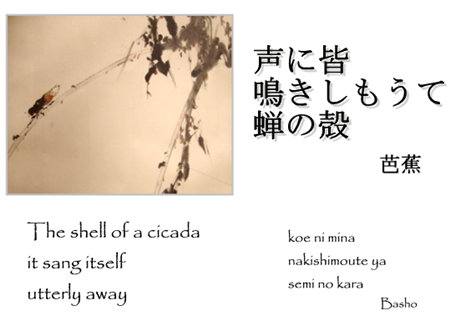 The_shell_of_the_cicada_basho