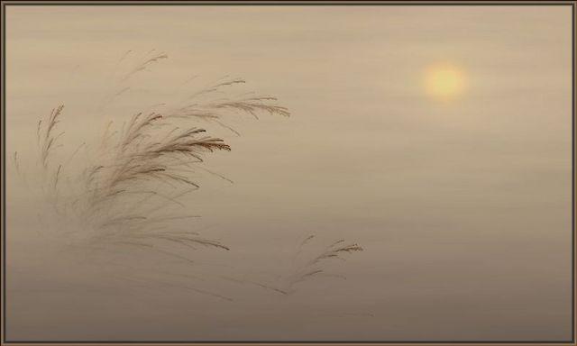 Beach_grasses_